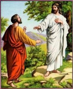 Señor, déjame ir primero a enterrar a mi padre
